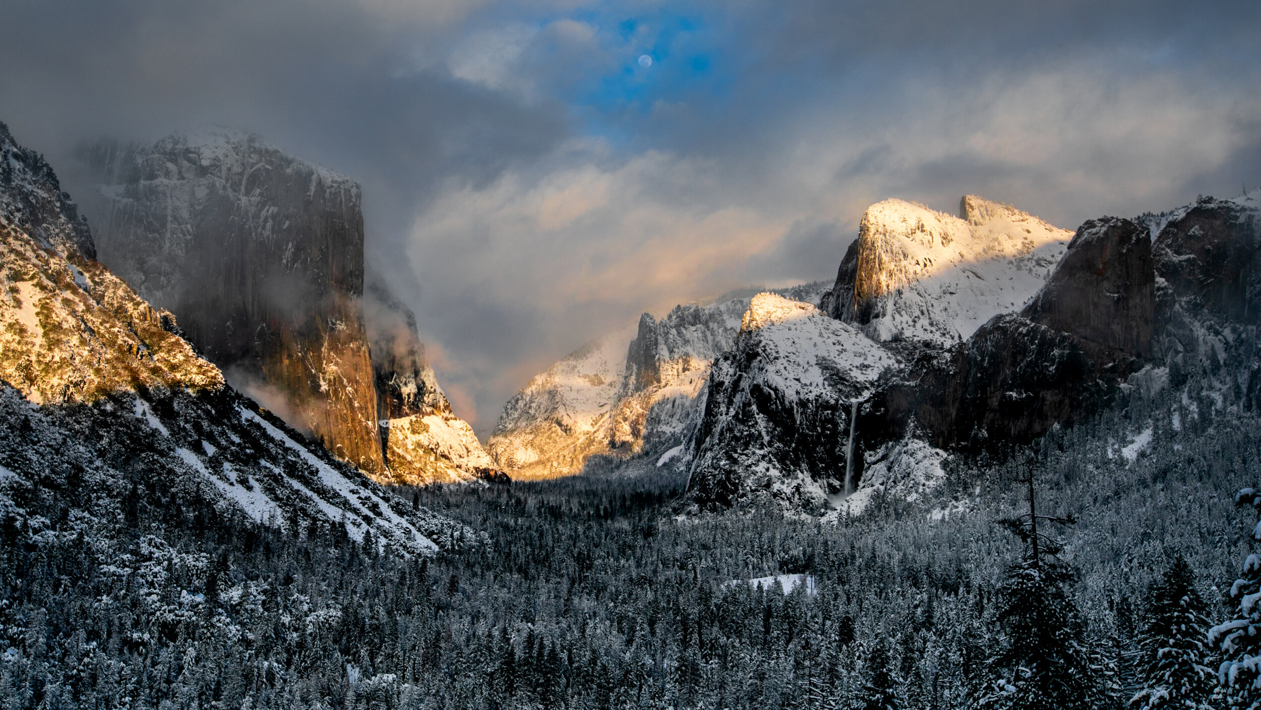 Yosemite Mountains and Trees